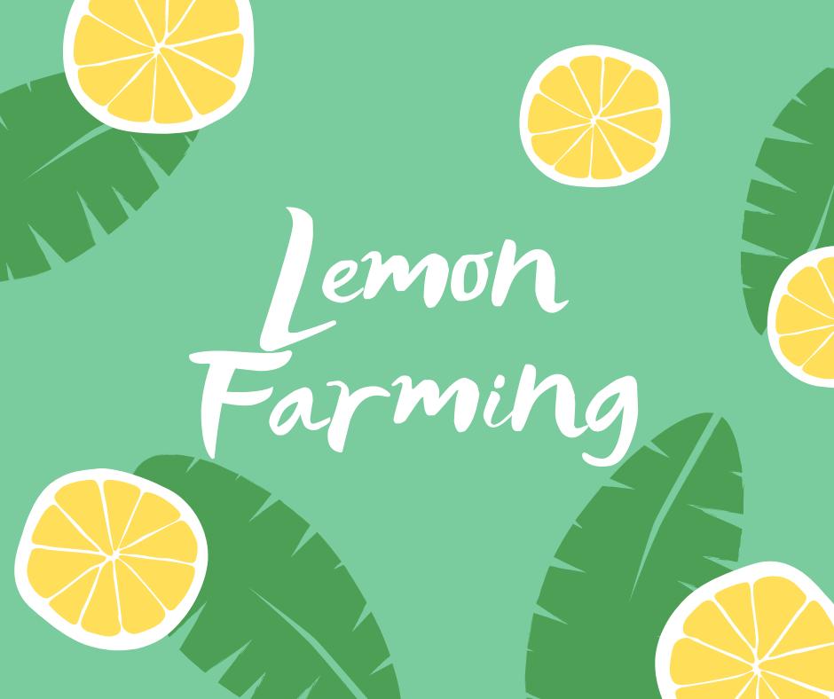 lemon production in pakistan